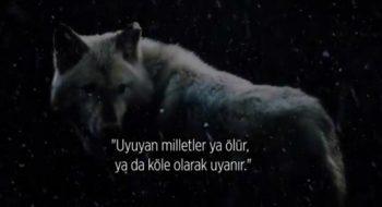 BÖRÜ Sinema Filminden İlk Fragman Geldi!