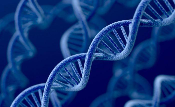 7000 Yıl Önce Erkeklere Tuhaf Bir Şey Oldu: Bir Erkeğe 20 Kadın