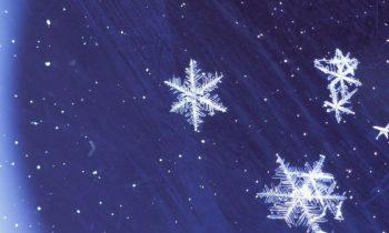 Kar Taneleri Hakkında 10 Farklı Bilgi