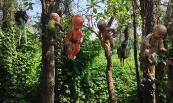 Tüyler Ürperten Bir Ada: Oyuncak Bebek Adası