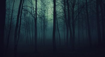 Lanetli Olduğuna İnanılan 3 Orman